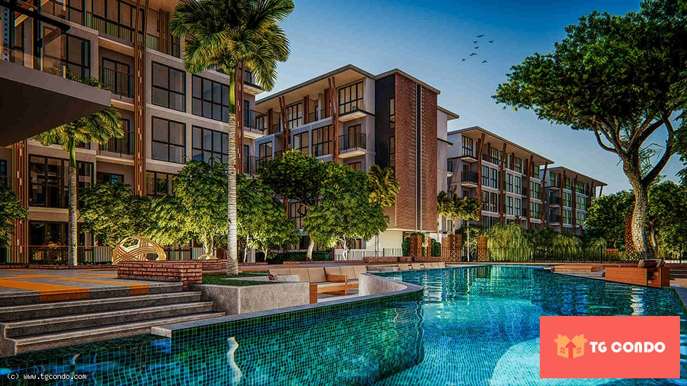 The Arise Chiang Mai Condo For Sale
