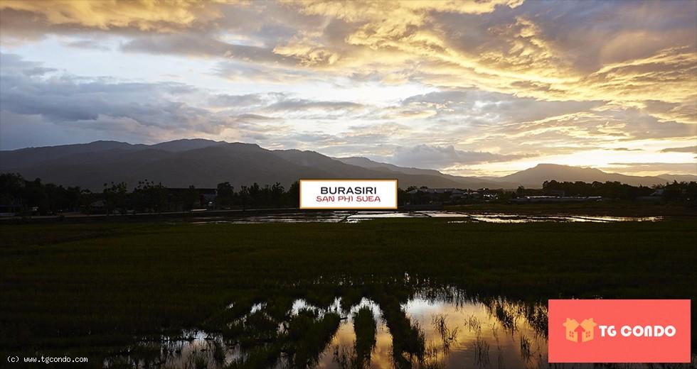 Burasiri Sanphisuea Chiang Mai For Sale