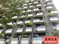 Condo Sukhumvit 31 for Rent