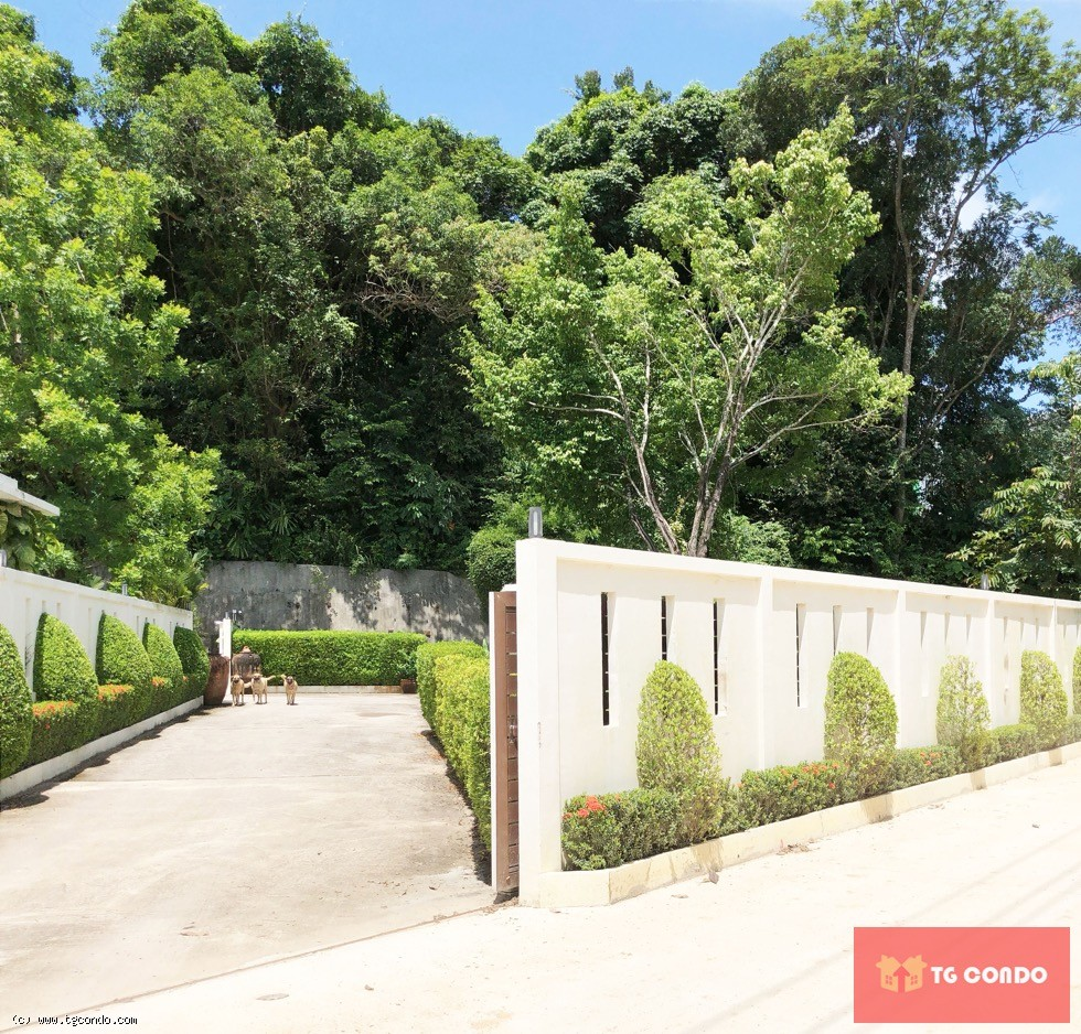 Phuket Nai Harn Land and Villa for Sale